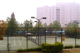 连片网球场